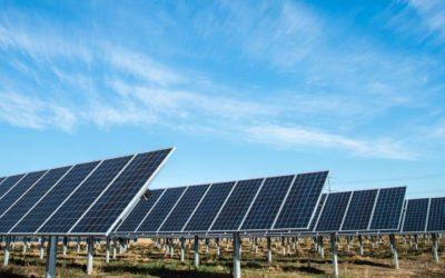 Klubtársunk, a Cerbona Élelmiszergyártó Kft. újhartyáni napelemparkja egy év alatt az áramfelhasználásának a másfélszeresét termelte.